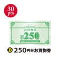 【30ポイント】(B)250円分お買物券