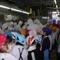 工場見学-01